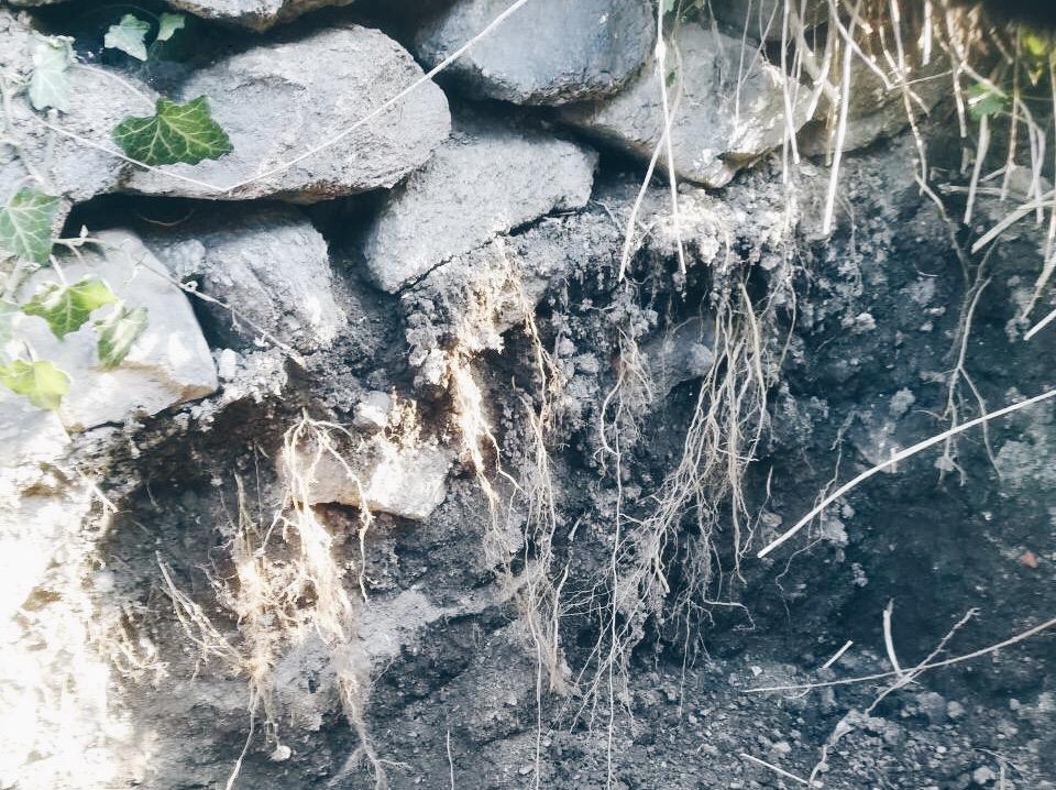 kameny za domem
